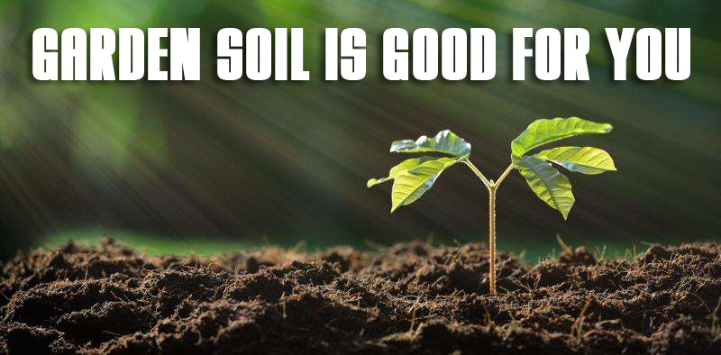 Garden Soil Is Good For You!